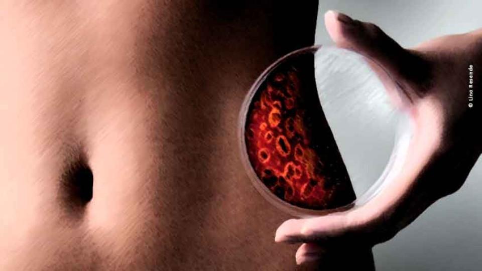 Corpo humano, microbioma com trilhões de bactérias